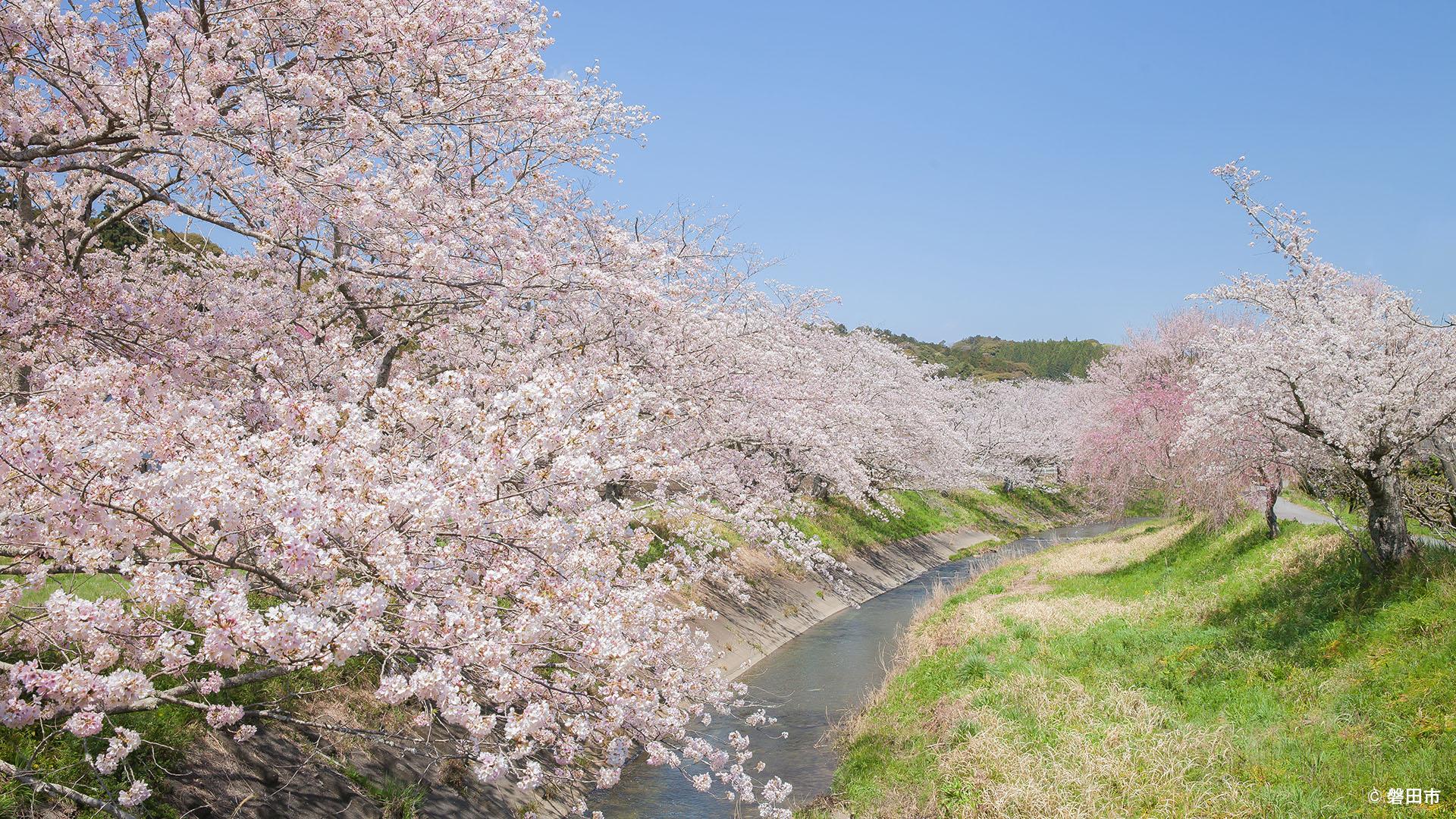 壁紙ギャラリー 磐田市公式ウェブサイト
